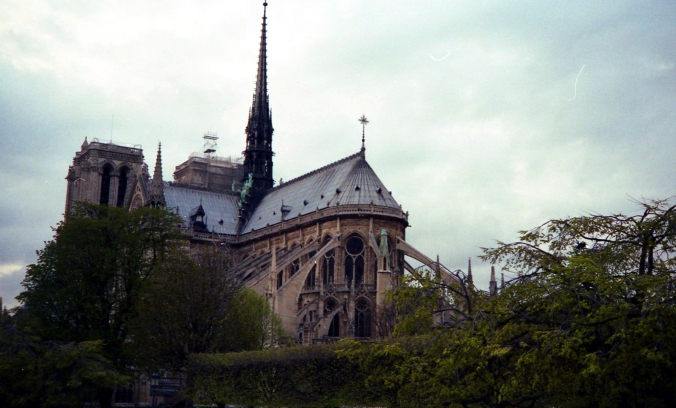 Picture of Notre Dame on the Île de la Cité in Paris, France