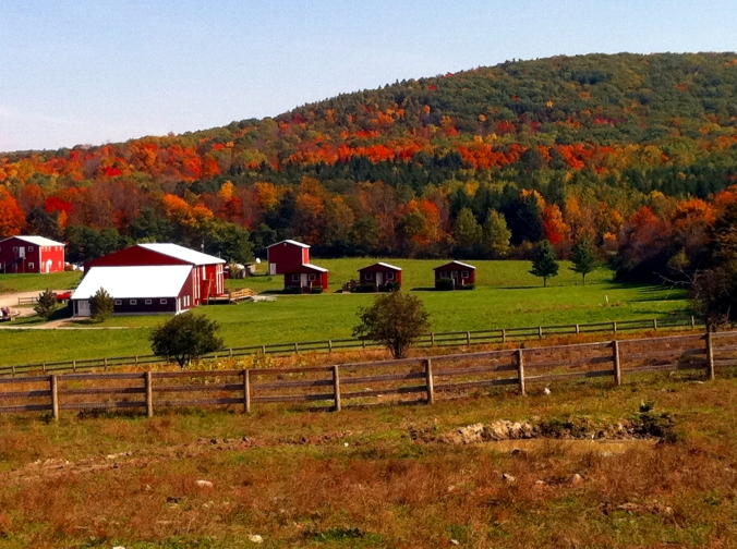 Picture of Farm Sanctuary in upstate New York