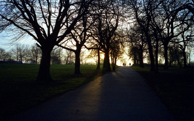 Picture of sunset in Regent's Park, London